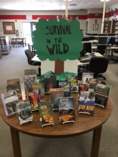 A picture of a library book display.